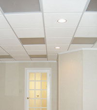 Basement Ceiling Tiles for a project we worked on in Ashland, Minnesota and Wisconsin
